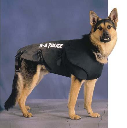 K9 Dogs