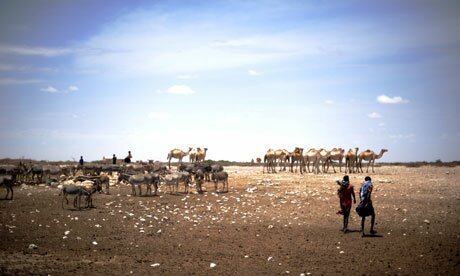Drought-in-Somalia