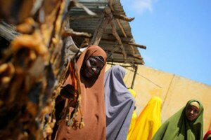 A Somali woman sells dried fish from a kiosk in a market area in the centre of the southern Somali port city of Kismayo in October 2012. Women are now learning skills such as net making so they can work in the male-dominated fishing industry