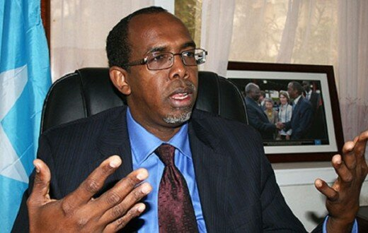"Somalia's ambassador in Kenya, Mohamed Ali Ameriko, said ""We have no information on the matter"""